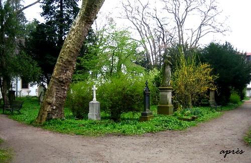 Alter Friedhof Freiburg 2