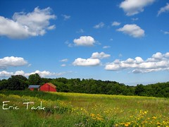 Summer on the farm (ET's Photo Home) Tags: flowers blue summer sky white green wisconsin clouds barn rural farm wildflowers abigfave colorphotoaward