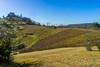 Frühling am Hirschauer Berg (MSPhotography-Art) Tags: nature landscape spring natur landschaft wandern springtime frühling tübingen hirschau hirschauerberg