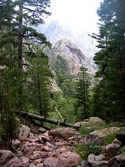 Monte Saltare depuis la Cavichja