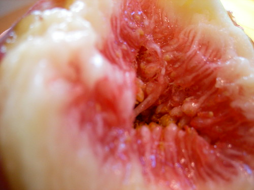Juicy Fig