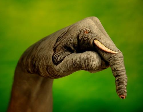 Hand Painted Elephant