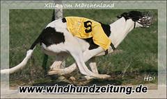 Xilla_Hilde04_2007_QL9T1026_WEB