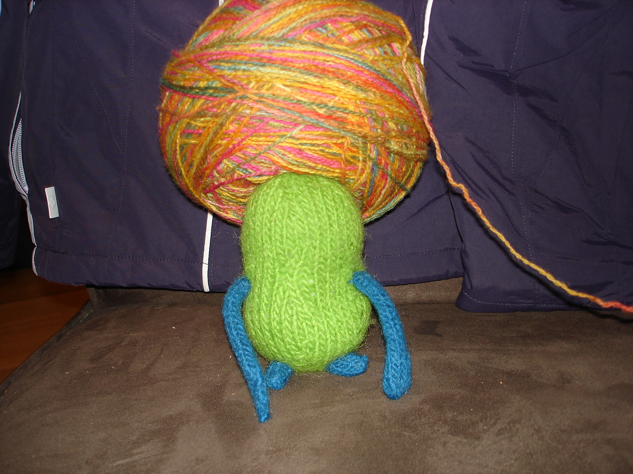 Henry, wearing yarn again