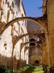 Sin techo (vcastelo) Tags: ruin ruine ruina monastery tp middleages monasterio monastere kloster mosteiro rovine klosterruine sanpedrodearlanza vcastelo víctorcastelo vkastelo