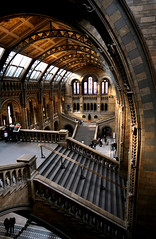 Unnatural halls of history, London (archidave) Tags: uk england building london museum architecture hall iron stair industrial arch terracotta steel space room gothic steps victorian entrance naturalhistory vault romanesque waterhouse revival piranesi faiance piranesian