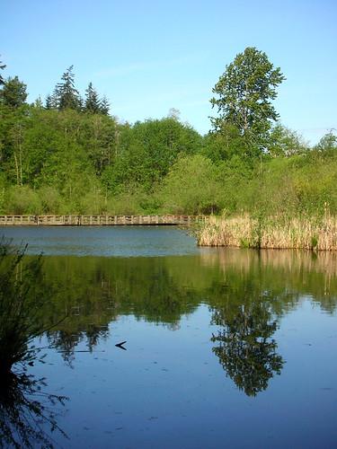 8-Scriber Lake