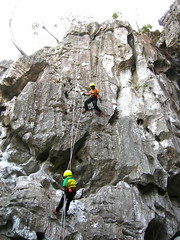 pet cave thailand08
