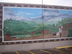 Black Sheep Coffee Cafe Mural by Anna Maria