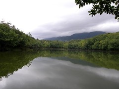 知床五湖 -- 四湖