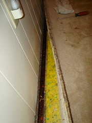 family_room_mold2