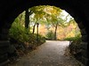 inscope arch, central park (Jana Carson) Tags: nyc november centralpark framing falltrees inscopearch
