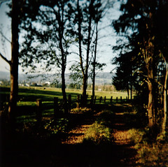 wherever there is light, there will be shadow ... (mathias-erhart) Tags: autumn trees light shadow tree fall film fence holga alley track shadows path portra160vc