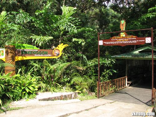 orang-utan-feeding-area-ent