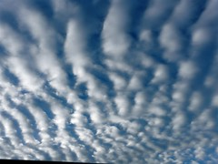 Clouds (judi berdis) Tags: sky usa nca willits mendocinocounty