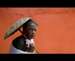 Old Pilgrim Woman Under The Protection Of An Umbrella Going To A Temple, Kochi, South India (Eric Lafforgue) Tags: old orange woman india wall umbrella temple democracy explore angry indie indi indien hind indi pilgrim inde hodu parapluie southasia indland  hindistan indija   ombrelle ndia hindustan 2052   lafforgue   ericlafforgue hindia  bhrat  indhiya bhratavarsha bhratadesha bharatadeshamu bhrrowtbaurshow  hndkastan