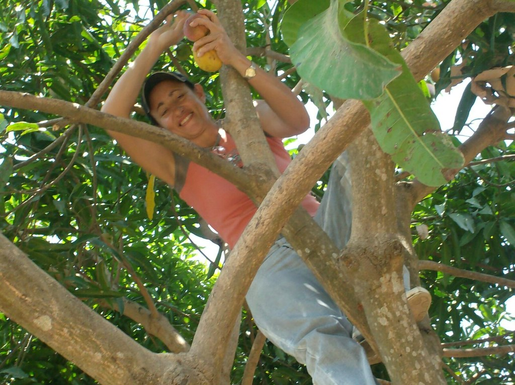 Luz Maria up a tree