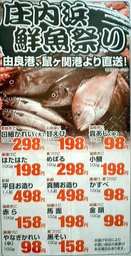 庄内浜の小鯛