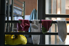 dirty socks (heffy88) Tags: socks spain hostal albergue