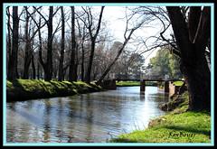Río Areco (roxboyer) Tags: argentina puente buenosaires estudio ojos tres sanantoniodeareco árboleda roxboyer roxanaboyer panoramafotográfico ríoareco