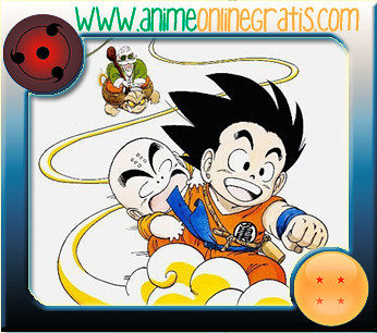 Dragon ball anime online