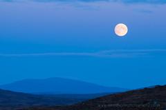 Rannoch Moonrise (dtaylorphotography) Tags: afternoon argyllandbute blue britain celestial cold countryside evening horizontal landscape moon moonrise outdoors rannochmoor scotland scottishhighlands uk unitedkingdom winter dusk