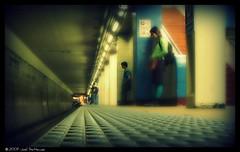 Blue Line Romance (@JoelSettecase) Tags: wickerpark london underground subway blueline el romance l elevated damen chicagodowntownurbancitygorgeousillinoisnewyorkphiladelphiaamericaunitedstatesnorthamericaskylinebusinessdistricttourism