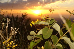 Img_03467 (Flavio Santos) Tags: sol crepusculo prdesol