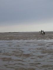Wirral Wondering - 2 Horse Wind Power (oceanician) Tags: wirral westkirby hoylake hilbreisland