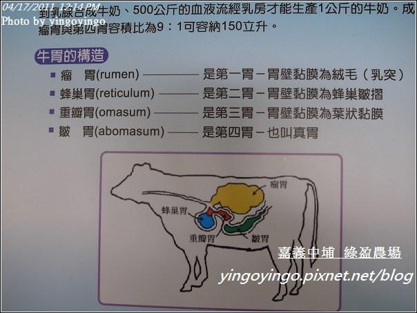 嘉義中埔_綠盈農場20110417_R0019031