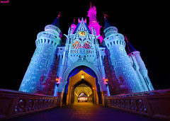 Cinderella Castle: Through The Eyes Of A Child (Tom.Bricker) Tags: orlando nikon florida disneyland wideangle disney disneyworld mickeymouse cinderella wdw waltdisneyworld magickingdom waltdisney cinderellacastle ultrawideangle disneypictures cinderellafountain disneyphotos d7000 wdwfigment tombricker nikond7000