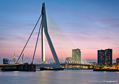 Delicatesse / Erasmusbrug / Rotterdam (zzapback) Tags: bridge pink blue panorama holland n