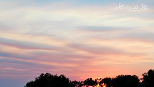 sunsetpicnic_09
