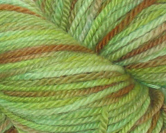 Olive Branch on Aran BFL - 4 oz