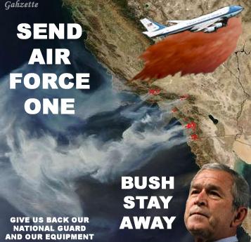 Bush Stay Away