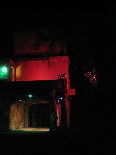 TRF by Night
