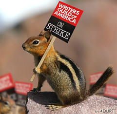 Not the End of this Story (WGA Strike) (4Durt) Tags: strike wga picketline onstrike writersguildofamerica diamondclassphotographer curttoumanian cascadegoldenmantledgroundsquirrel writersguildstrike