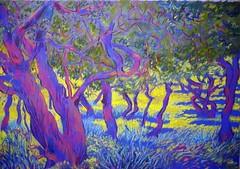Day 42 ,Sunlit carobs,stage 2, pastel. A3 size. (Pogorita) Tags: blue sunlight landscape woods woodlands pastel cyprus colourful drawingaday bluetrees artillustration colourartaward carobtrees