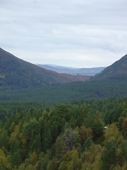 Glenmore (gmj49) Tags: scotland scenery scottish highland appenninosettentrionalealpinatura gmj49 bestofbritishnature photosrus