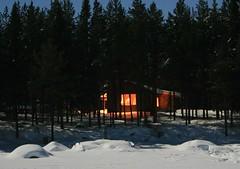 IMG_3153 (gezzajax) Tags: blue snow cold art ice water architecture reindeer design bed sweden freezing arctic e freeze lapland northern dogsledding kiruna icehotel arcticcircle jukkasjrvi snowmobil torne reindeerskin rivertorne
