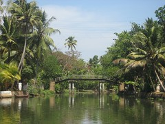 backwater image of kerala