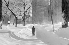 зима  -  Hiver (Pierre♪ à ♪VanCouver) Tags: winter snow canada montreal hiver invierno blizzard inverno 冬 liliane fuyu зима quebecprovince