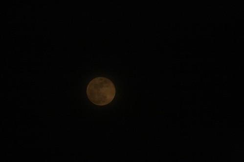 Spring Moon II