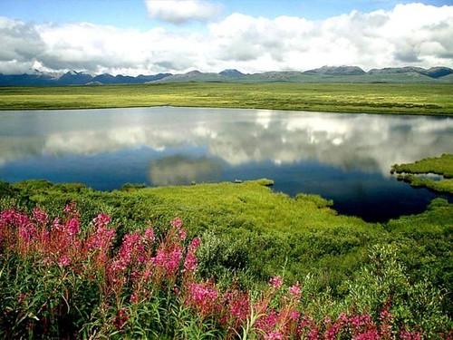 Lago en Alaska