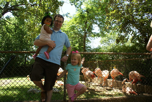 Daddy & Hillary Flamingo in front of the real flamingos