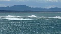 Tide coming in on a Windy Evening at Tauranga, New Zealand (Joseph Hollick) Tags: newzealand tide wind tauranga