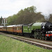 Tornado leaves Goathland