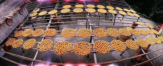 2007.10.14 味衛佳柿餅
