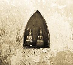 A niche for buddhas