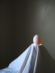 Flemish Egg (Iron Photographer 38)